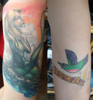 Cover Up of a Humming Bird
